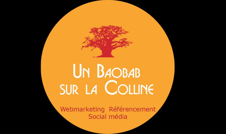 Agence webmarketing Un Baobab sur la colline